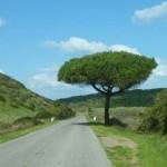 Diashow Portugal 2013