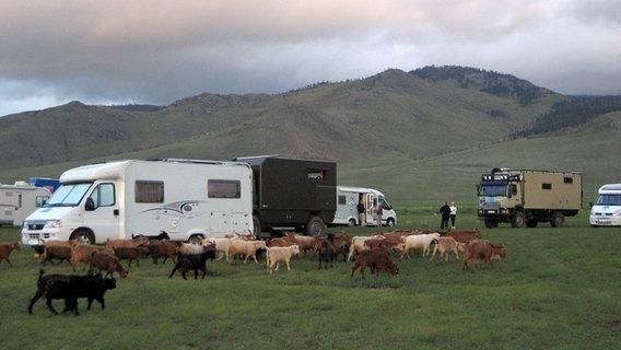 Rentner campen in der Mongolei. © WDR/Ina Ruck, honorarfrei
