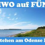 UMIWO auf FÜNEN |#9| Freistehen am Odense Fjord