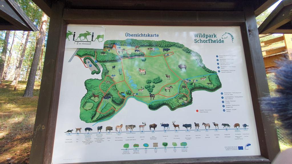 Uebersichtskarte Wildpark Schorfheide
